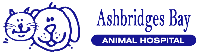 Ashbridges Bay Animal Hospital